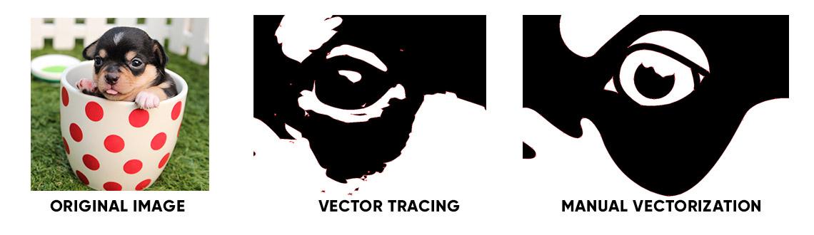 Too Many Anchor Points Vectorization