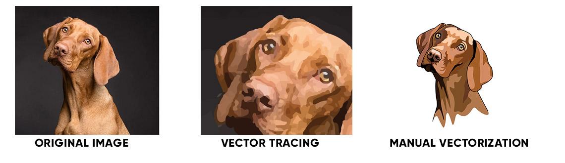 Vectorizing photos